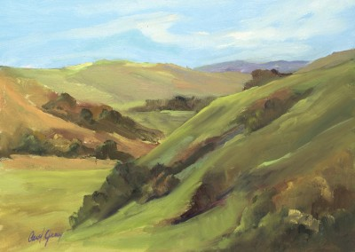 Salinas Valley Hills